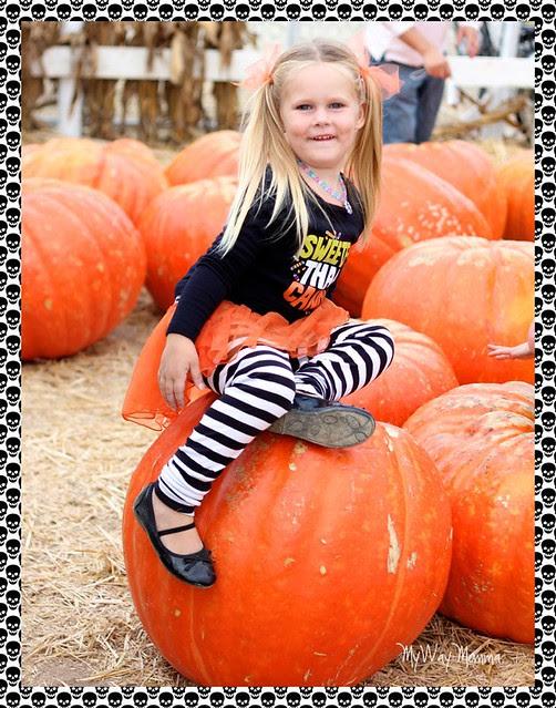 Pumpkin Patch October 2012 138