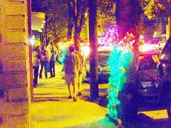 P1040321-2010-10-01-Flux-Marisa-Dipaolo-The-Garden-of-Oz-False-Colors