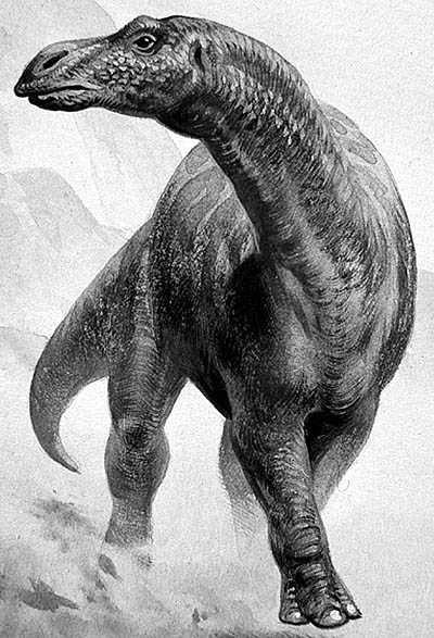 Dinosaurio del mes