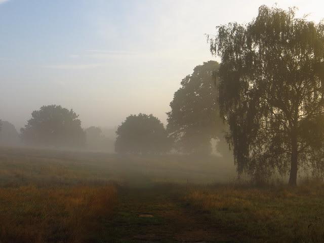 Tumulus Field