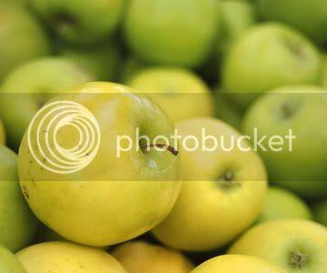 83+ Gambar Apel Madu