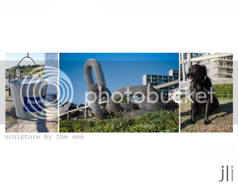 sculpture by the sea photo blog-8_zpsd18c7a1b.jpg