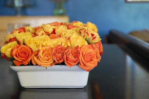 low roses