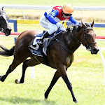 Pop Star Princess On Song For Black Type Racing - Horse Betting