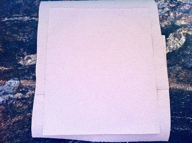 Plate Lined with Recycled Paper Towels