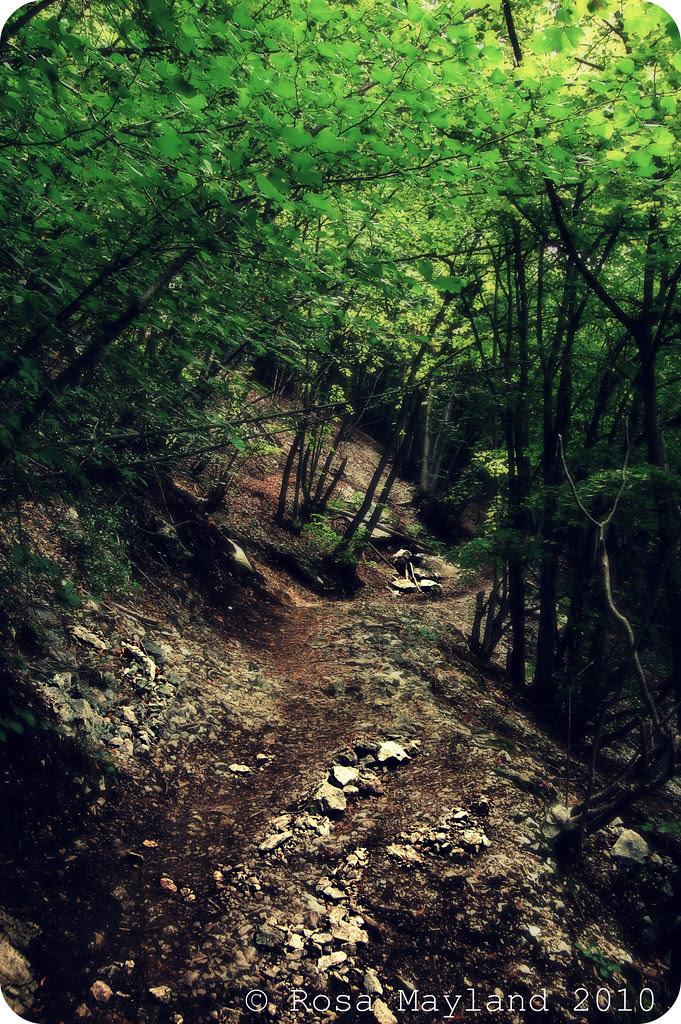 Salève Walk 7.3 bis
