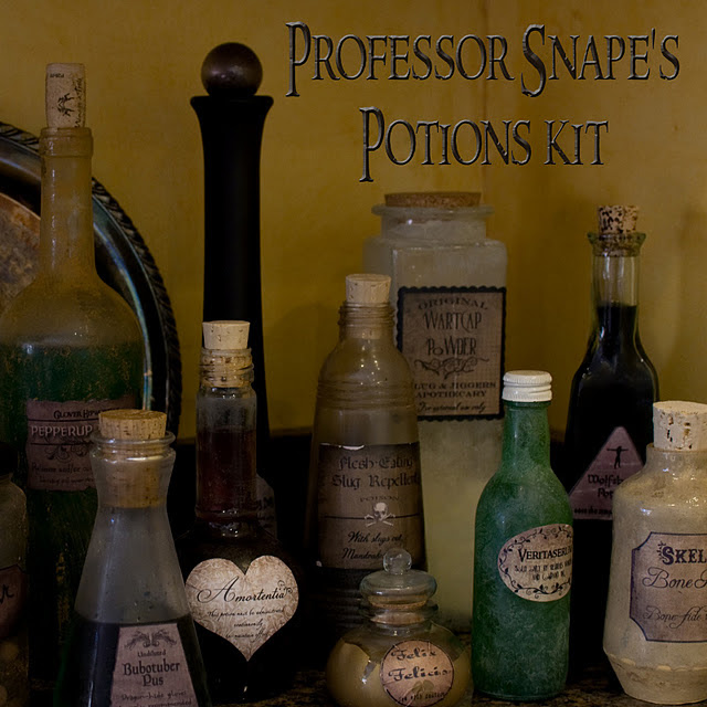 Professor Snape Potions Kit by Over the Big Moon