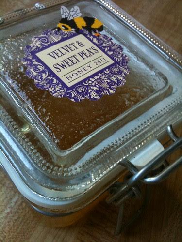 Velvet & Sweetpea's Honey by Ayala Moriel