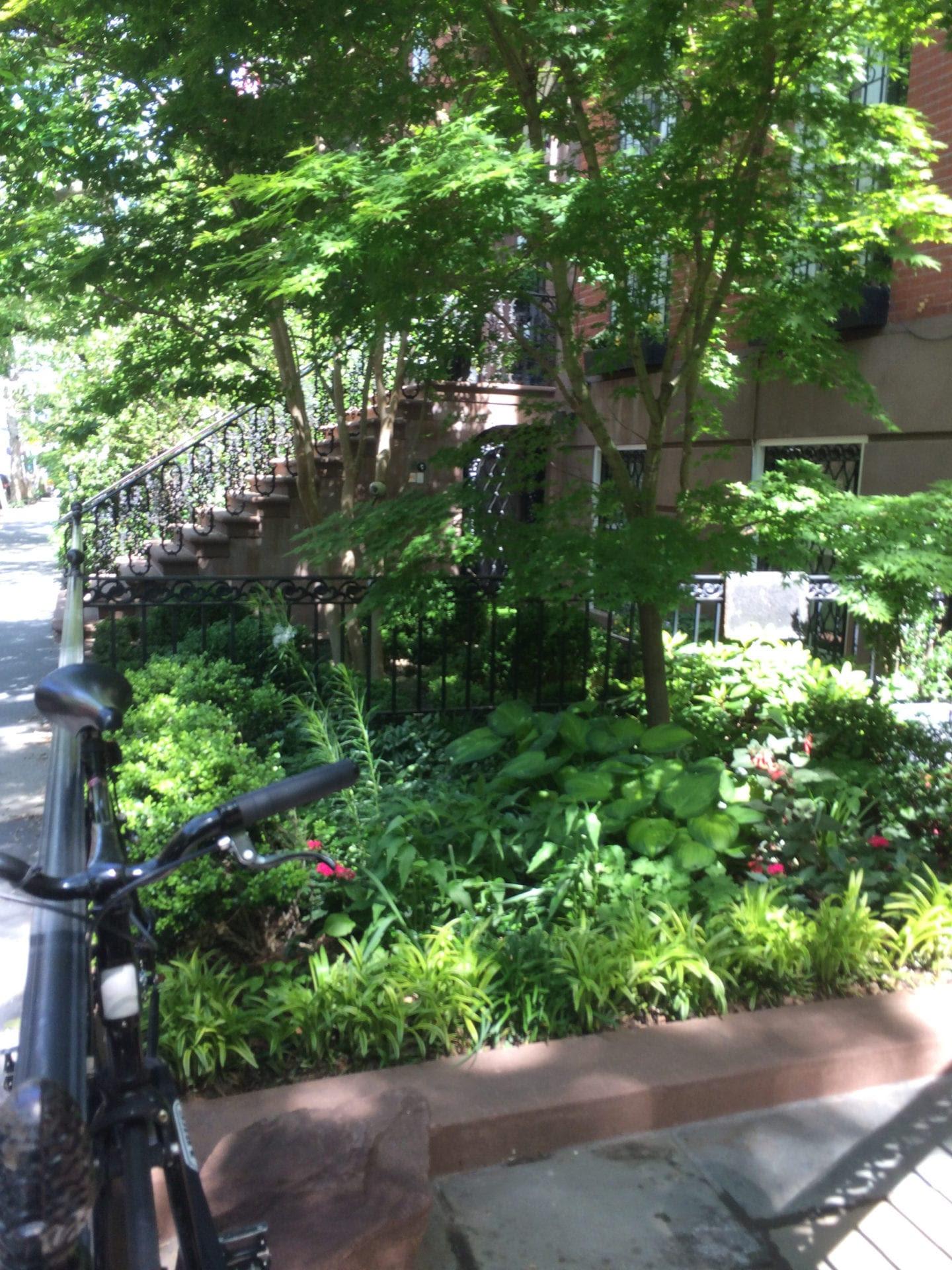 Were In A Tight Spot Landscape Design For Small Urban Spaces