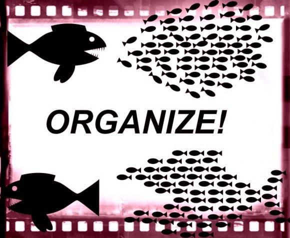 'Organize', intervención de TrasTando