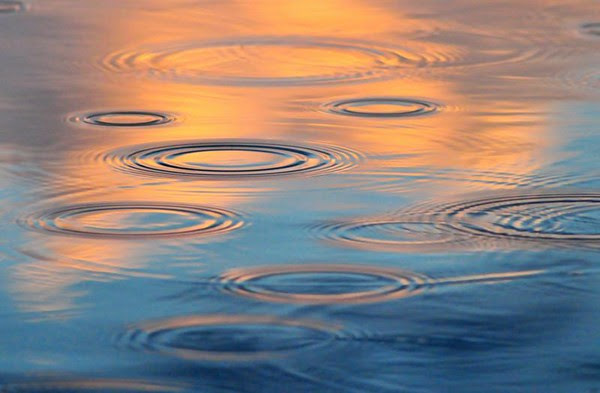 Sunset Raindrops