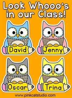 Name tags (Owl theme) classroom decoration | Classroom, Tags and Names