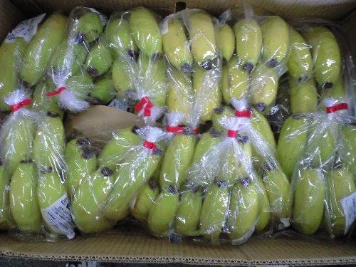 フィリピン産スーパーハイランドかプレシャスバナナ大箱12kg入り