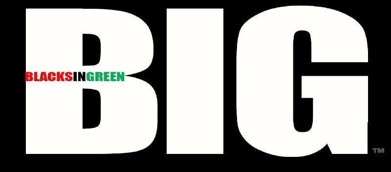 BIG NEW LOGO 7