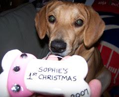 Sophie_ornament