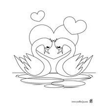 Dibujos Para Colorear Cisnes Amor Puro Eshellokidscom