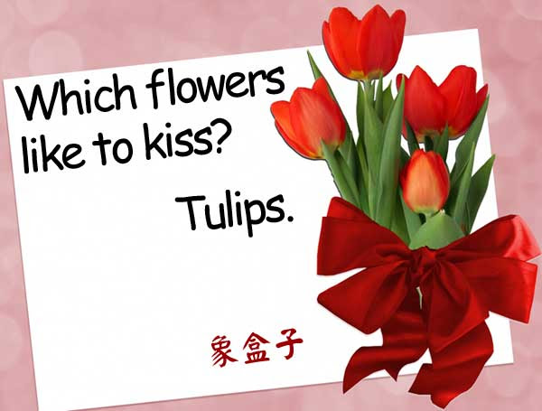 tulips lips kiss