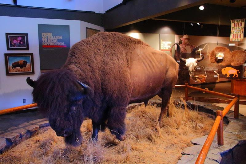IMG_3737 Visitor Center, National Bison Range