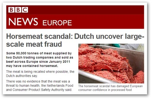 EU Referendum Horsemeat fraud a huge system failure