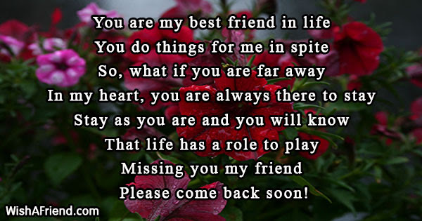 You Are My Best Friend In Missing You Message For Friends