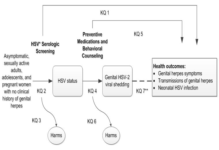 The figure is an analytic framework that depicts the seven key questions described in the research plan. In general, it illustrates the overarching questions of whether serologic screening in asymptomatic sexually active adults, adolescents, and pregnant women with no clinical history of genital herpes leads to improved health outcomes or potential harms. It also illustrates the intermediate steps and key questions about the accuracy of serologic screening tests for early detection of genital herpes. Finally, it illustrates whether treatment of genital herpes leads to improved health outcomes or potential harms.