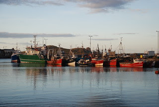 Trawler Cluster