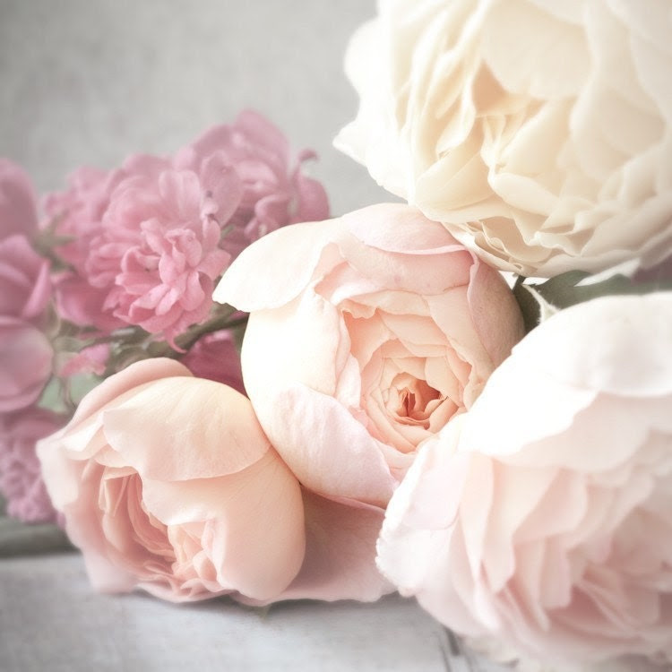 Rose Photography - Romantic Pink Roses, Nature Photography, Wall Decor