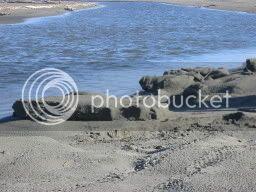 Sandshapes