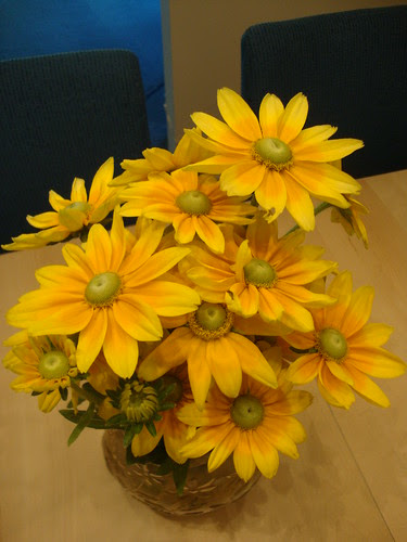 green eyed susans!