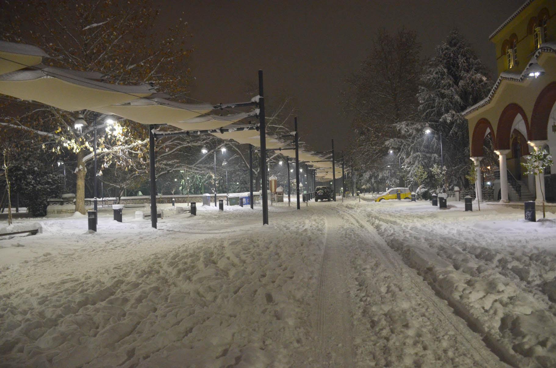 Λαρισα χιονι (5)