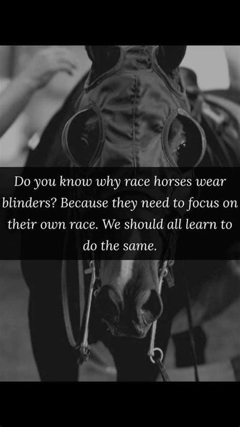race horses wear blinders  focus    race