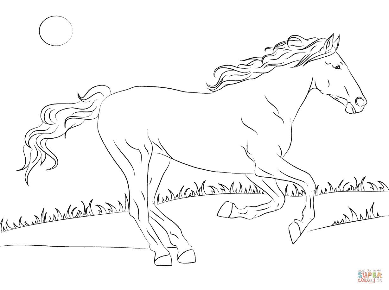 Rennend Paard Kleurplaat Charmante Springend Paard Kleurplaat Krijg Duizenden