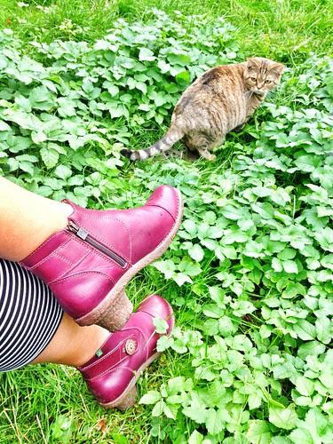 shoe per diem week 39, 2013