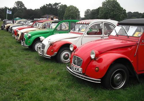 Tin Snail line-up
