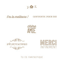 Juste Fantastique Clear Stamp Set (French)