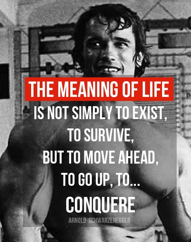 Funny Arnold Schwarzenegger Quotes Youtube Motivation Best