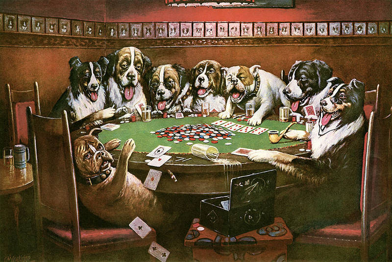 Image result for dogs playing cards
