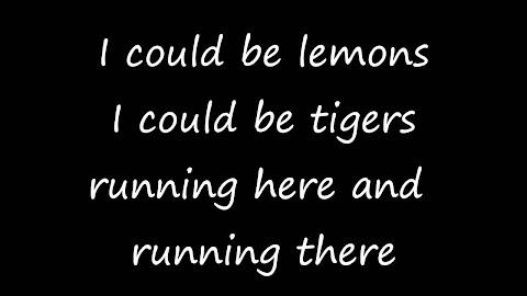 The Random Song Dermot Whelan And Dave Moore Lyrics