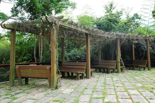 【南投】阿薩姆紅茶的故鄉。貓蘭山步道之旅DSC_1792