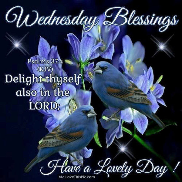 Wednesday Blessings Quotes And Images Daily Inspiration Quotes