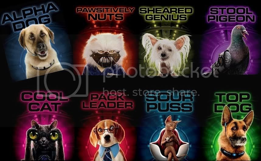 Cats_and_Dogs_2_Kitty_Galore.jpg Cats & Dogs: Revenge Of Kitty Galore posters image by I-Love-All-My-Pets