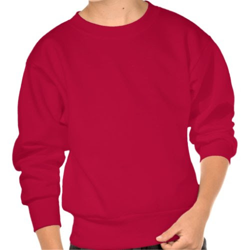 pi day pullover sweatshirt