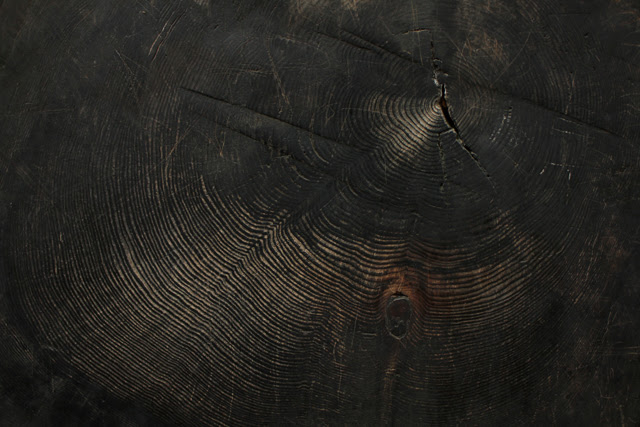 Redwood tree rings