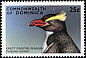 Erect-crested Penguin Eudyptes sclateri