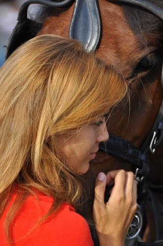 Hübsches Pferd am Pariser Platz