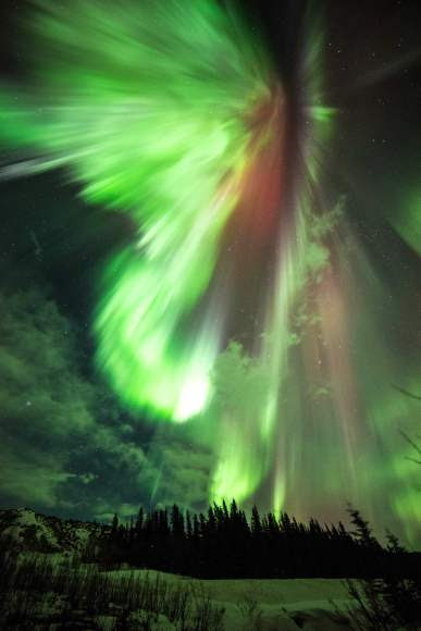 Just in time for St. Patrick's Day - a spectacular green and red aurora photographed early this morning March 17 from Donnelly Creek, Alaska. Credit: Sebastian Saarloos