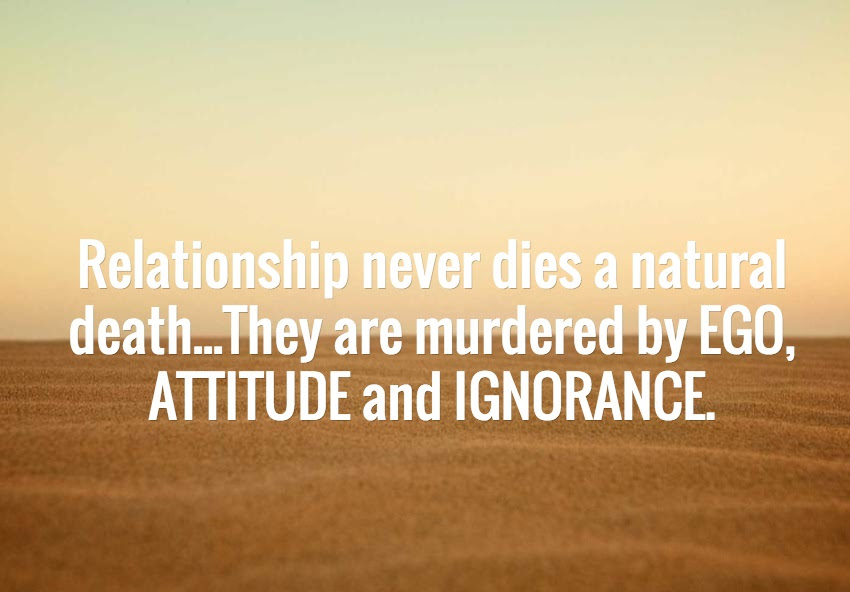 Best Ego Quote Relationship Murdered By Ego Attitude