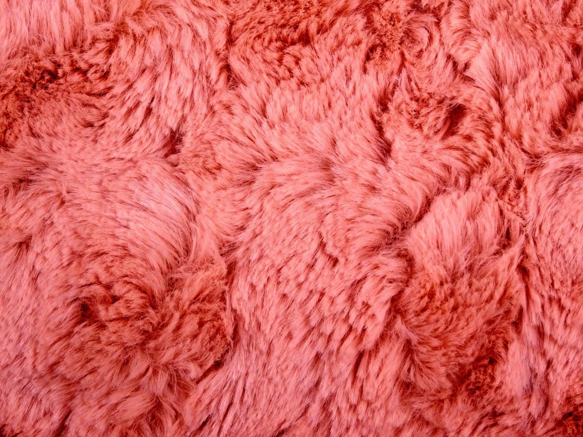 Fur Wallpaper 52 Images