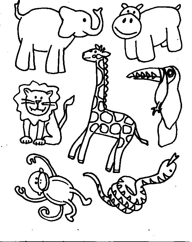 Free Zoo Animal Coloring Pages in 2020 | Zoo animal coloring pages ... | 800x637