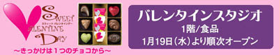 松菱バレンタインスタジオ